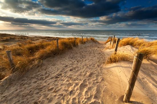sand path to North sea beach