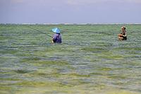 Angler im Wasser am Strand von Sanur , Bali, Indonesien