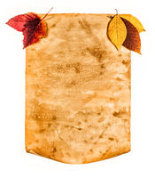 Old paper with autumn leaves, autumn note