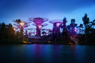 Gardens by the Bay in Singapore at Dusk