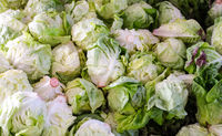 Pile of green iceberg lettuce at a farmers market.