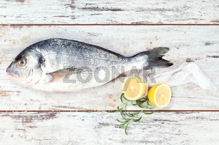 Sea bream on white wooden background.