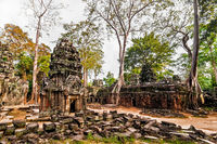 Ancient Khmer architecture. Panorama view of Ta Prohm temple with giant banyan trees at Angkor Wat complex, Siem Reap, Cambodia