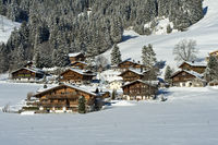 Swiss chalets in the winterly landscape