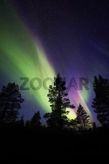 Nordlicht (Aurora borealis), Lappland
