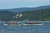 Dragon boat race, Lac de Joux, Switzerland