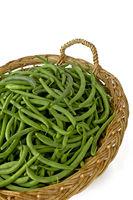 common beans - phaseolus vulgaris