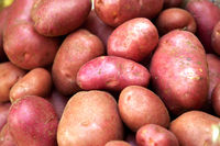 Fresh potatoes sold at a market
