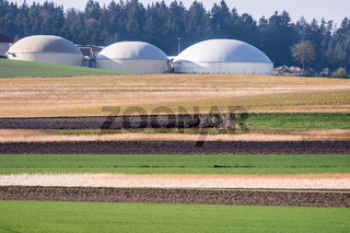 Green bio energy