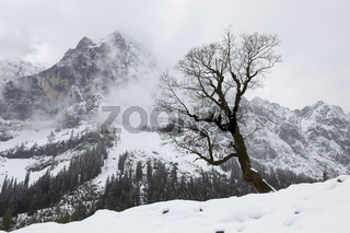 Wintereinbruch im Frühling, Ahornboden, Tirol,