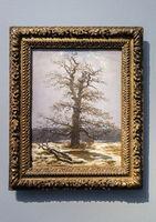 Oak in the Snow, Caspar David Friedrich