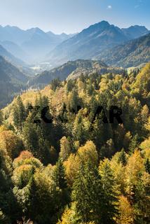 Stillachtal im Allgäu mit Wald und Bergen