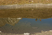 Mirror image of hikers, Valais, Switzerland