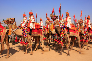Camel procession at Desert Festival, Jaisalmer, India