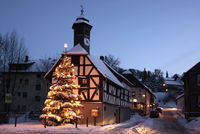 Town Hall and Christmas tree at night