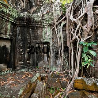 Ta Prohm temple at Angkor Wat, Siem Reap, Cambodia