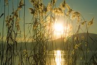 Sundown at Laacher See germany