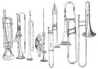various forms of old brass instruments