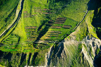Green terrace texture of Himalaya high mountain landscape. India
