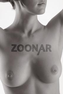 weibliche Brüste