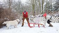 Hund zieht Schlitten mit Geschenken zu Weihnachten