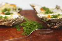 Oysters under cheese and dill