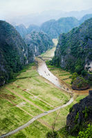 Rice fields at Tam Coc, Ninh Binh, Vietnam
