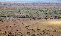 landscape at Kruger National Park, South Africa
