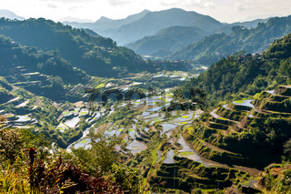 rice-terraces of Banaue