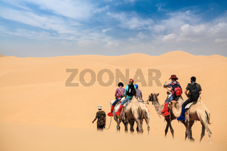 camel caravan in desert