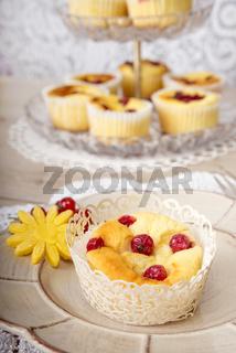 Quark Muffin