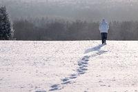 Walker on snowy meadow