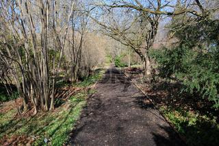 Rindenweg, Bark-way