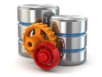 Storage administration concept. Database symbol and gears.