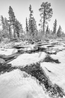 gefrierender Bach, Lappland