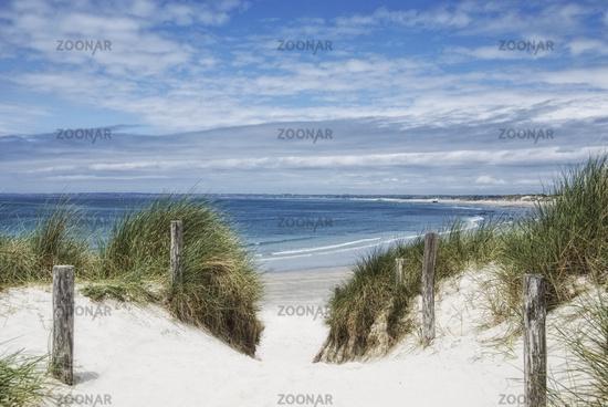 dunes at the atlantic ocean