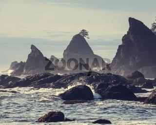Olympik coast