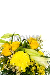 Rosen-Lilien 2