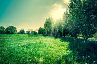 Countryside landscape with beautiful sunshine
