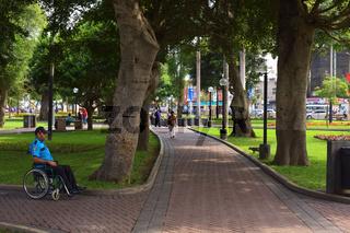 Parque Kennedy in Miraflores, Lima, Peru