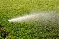 Sprinkler watering new lawn. Sprinkler system working on fresh green grass