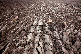 recently plowed land