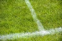 Football grass with white lines