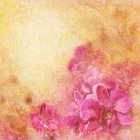 Grunge texture with abstract romantic floral background. Pink tropical orchid flowers in vintage style