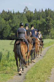 Ausritt mit Sicherheitsweste / Riders wearing a body protector
