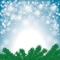 Christmas Snow Lights Blue Sky Twigs