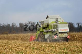 Mähdrescher bei der Ernte von Mais