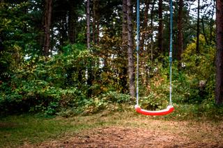 Swing in forest