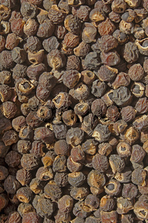 Seeds of Reetha, Chinese Soapberry, North Indian soapnut, Washing nuts, Sapindus mukorossi, India