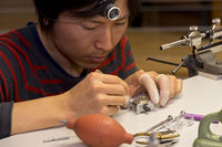 Watchmaker assembling a wristwatch
